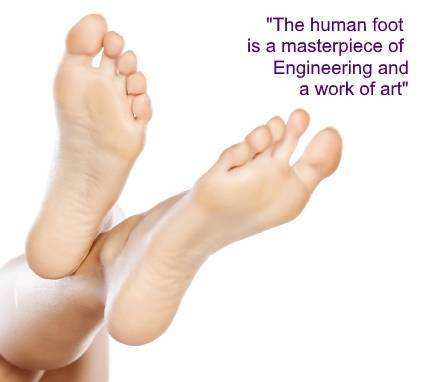 human foot quote